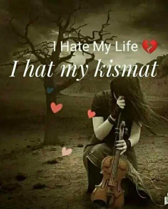 🌹I hate my life😔🌹 - Hate My Life I hat my kismat - ShareChat