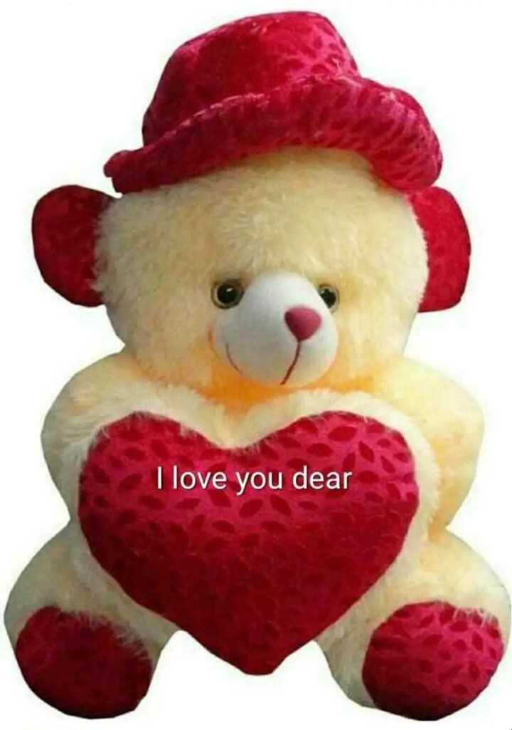 i love teddy - I love you dear - ShareChat