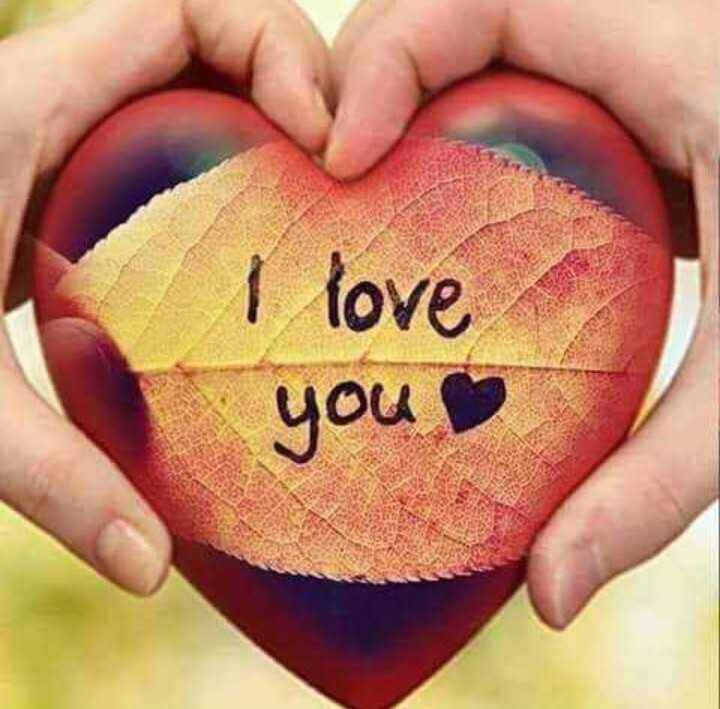 i love you - I love you - ShareChat