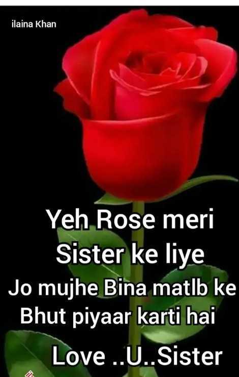 🌹 i love you  my  sister🌹 - ilaina Khan Yeh Rose meri Sister ke liye Jo mujhe Bina matlb ke Bhut piyaar karti hai Love . . U . . Sister - ShareChat