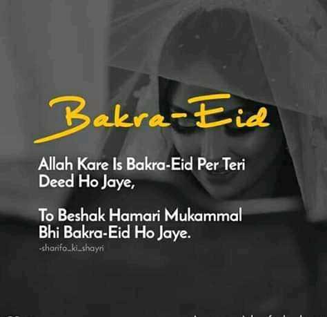 isha - Bakra - Eid Allah Kare Is Bakra Eid Per Teri Deed Ho Jaye , To Beshak Hamari Mukammal Bhi Bakra Eid Ho Jaye . - sharifo _ ki _ shayri - ShareChat