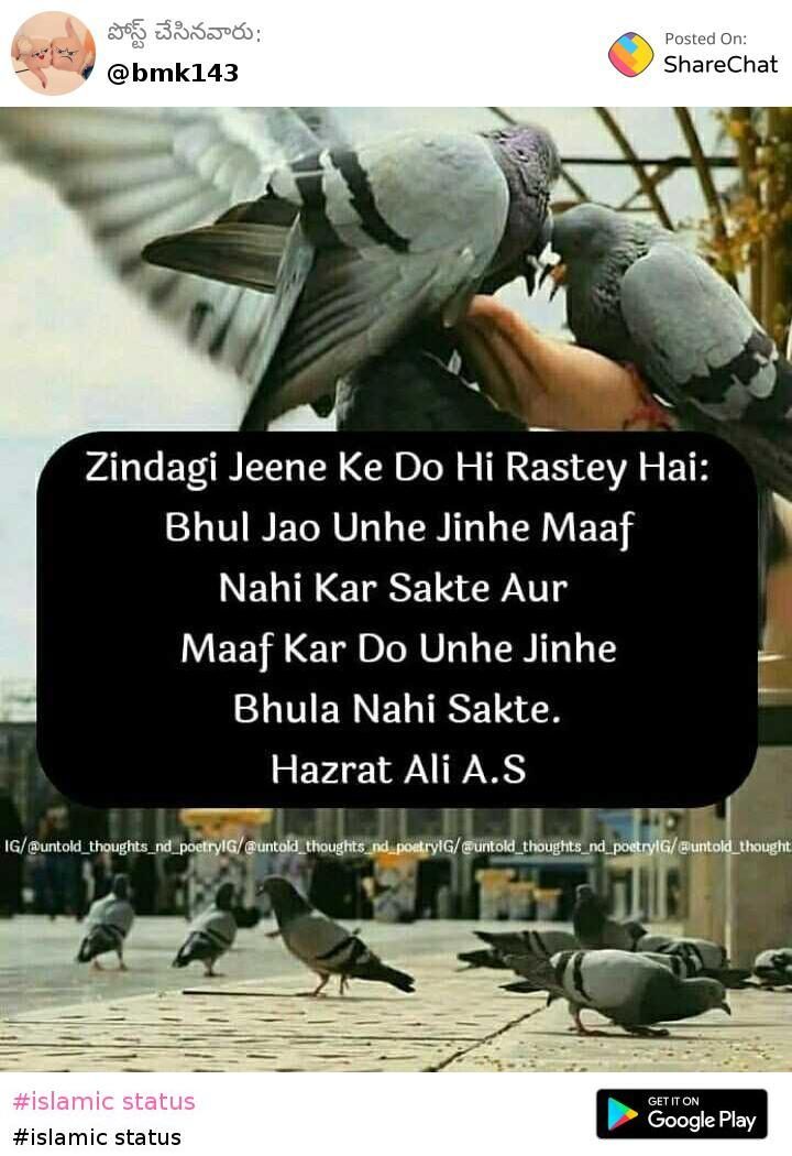 islamic status Images Mohammad Khan - ShareChat - Funny