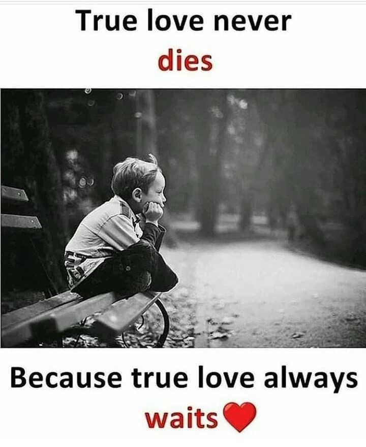 it's true - True love never dies Because true love always waits - ShareChat