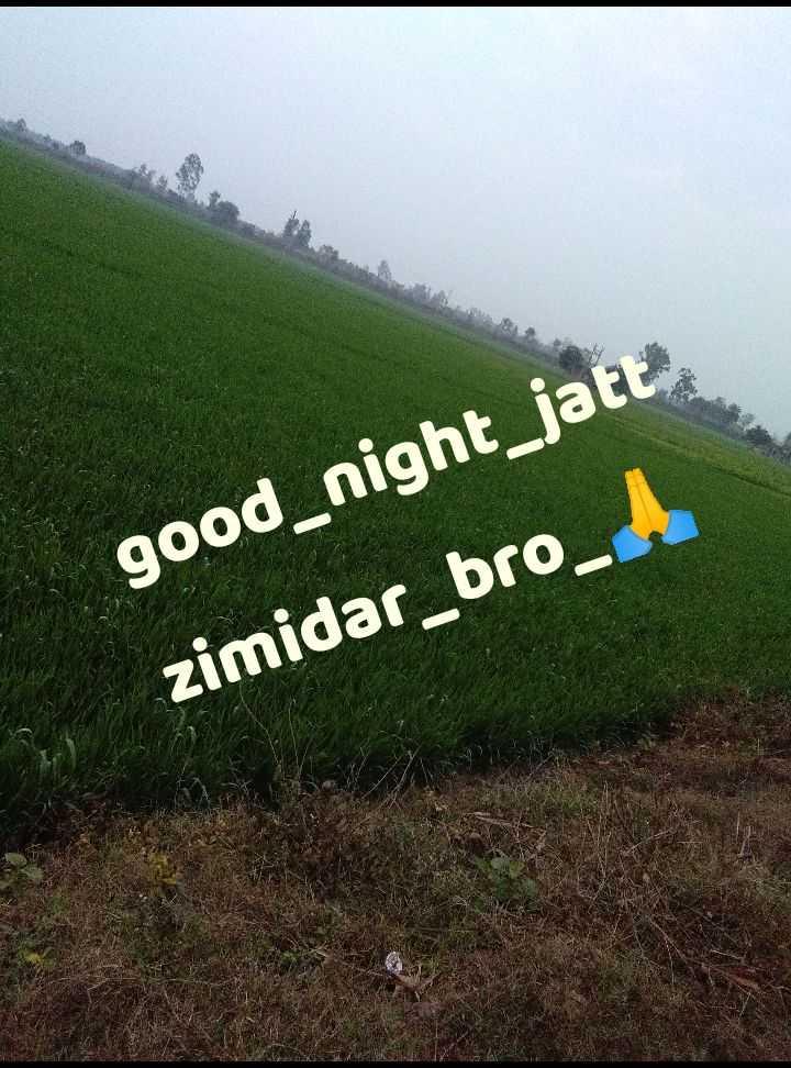 jatt zimidar - good _ night _ jatt zimidar _ bro _ - ShareChat