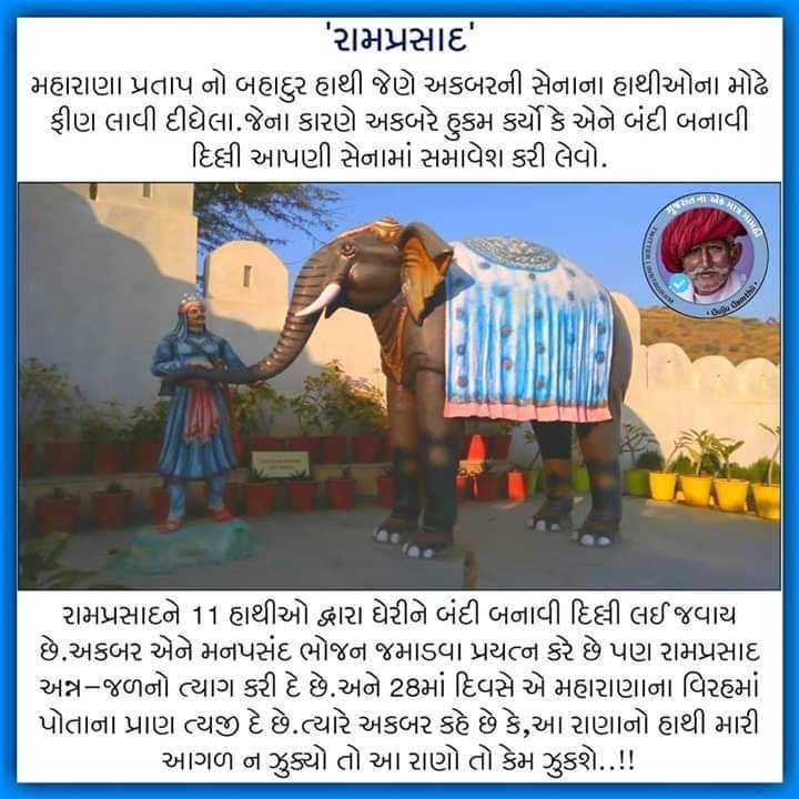jay Rajputana - ' રામપ્રસાદ ' મહારાણા પ્રતાપ નો બહાદુર હાથી જેણે અકબરની સેનાના હાથીઓના મોઢે ફીણ લાવી દીધેલા . જેના કારણે અકબરે હુકમ કર્યો કે એને બંદી બનાવી . દિલ્લી આપણી સેનામાં સમાવેશ કરી લેવો . તી રામપ્રસાદને 11 હાથીઓ દ્વારા ઘેરીને બંદી બનાવી દિલ્લી લઈ જવાયા છે . અકબર એને મનપસંદ ભોજન જમાડવા પ્રયત્ન કરે છે પણ રામપ્રસાદ અન્ન - જળનો ત્યાગ કરી દે છે . અને 28માં દિવસે એ મહારાણાના વિરહમાં પોતાના પ્રાણ ત્યજી દે છે . ત્યારે અકબર કહે છે કે , આ રાણાનો હાથી મારી આગળ ન ઝુક્યો તો આ રાણો તો કેમ ઝુકશે . . ! ! - ShareChat