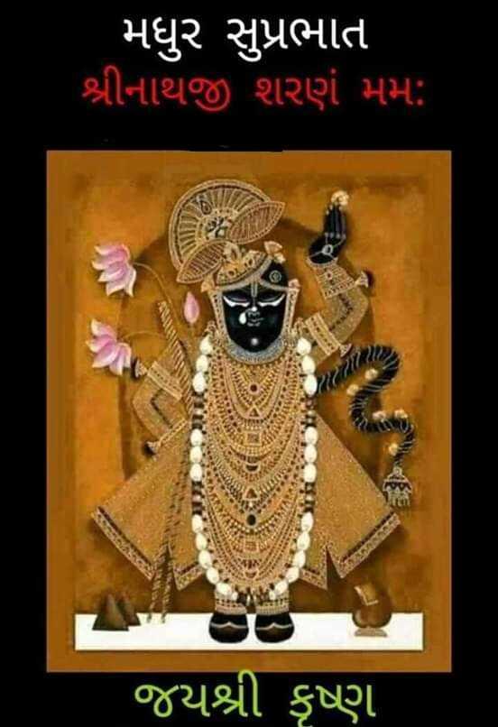 jay shree krishna - ' મધુર સુપ્રભાત શ્રીનાથજી શરણં મમ : જયશ્રી કૃષ્ણ - ShareChat