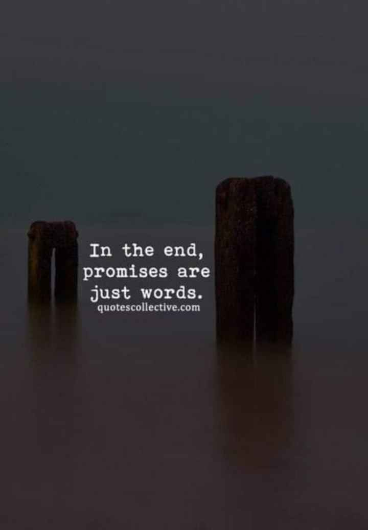 jeevanada sathya - In the end , promises are just words . quotescollective . com - ShareChat