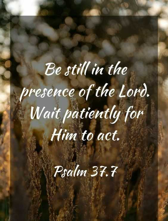 jesus meracles - Be still in the presence of the Lord . Wait patiently for Him to act . Psalm 37 . 7 - ShareChat