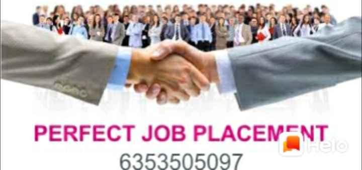 job safar - PERFECT JOB PLACENENT 6353505097 - ShareChat