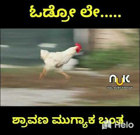 joke 😜😜 - ಓಡೋ ಲೇ . . . . . ನಮ್ಮ ಉತ್ತರ ಕರ್ನಾಟಕ ಶ್ರಾವಣ ಮುಗ್ಯಾಕ ಬಂತು - ShareChat