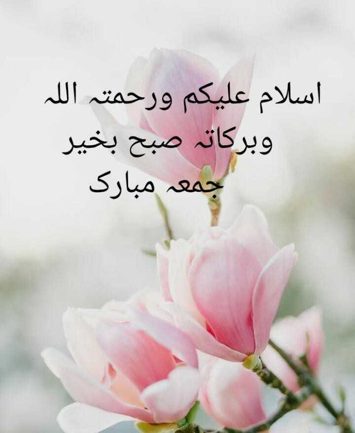 🌹💕jumma mubarak💕🌹 - اسلام علیکم ورحمتہ اللہ وبرکاتہ صبح بخیر جمعہ مبارک - ShareChat