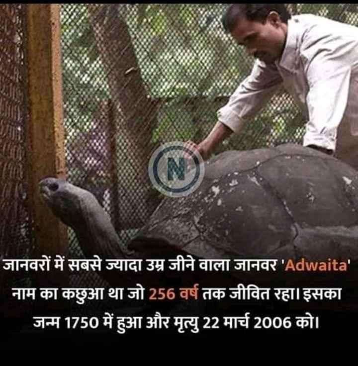 just knowledge - जानवरों में सबसे ज्यादा उम्र जीने वाला जानवर ' Adwaita ' नाम का कछुआ था जो 256 वर्ष तक जीवित रहा । इसका जन्म 1750 में हुआ और मृत्यु 22 मार्च 2006 को । - ShareChat