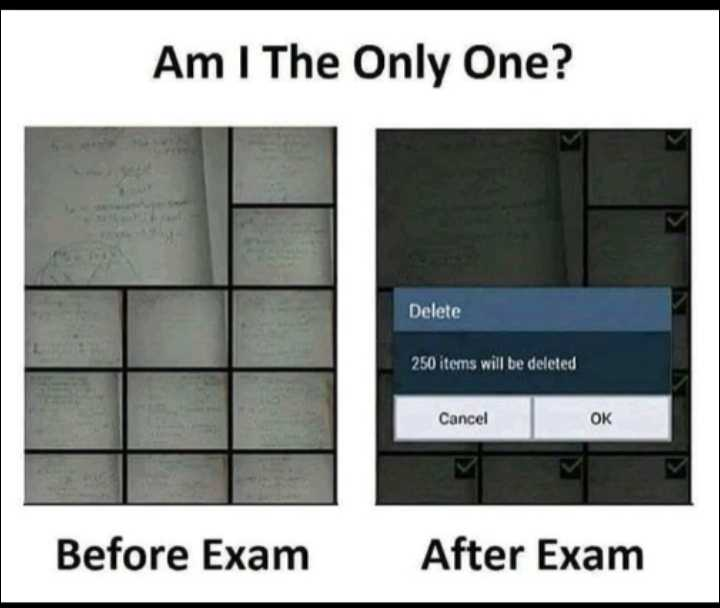klola😂😂😁😁😅😜😜 - Am I The Only One ? Delete 250 items will be deleted Cancel OK Before Exam After Exam - ShareChat