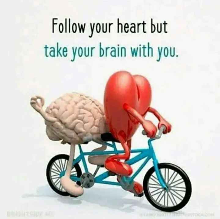 life style - Follow your heart but take your brain with you . - ShareChat