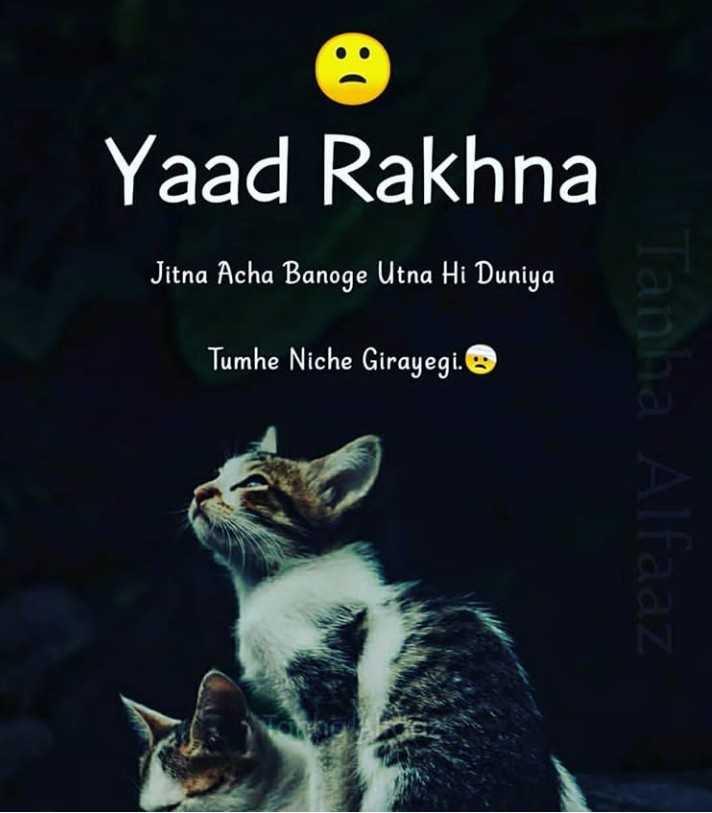 live life - Yaad Rakhna Jitna Acha Banoge Utna Hi Duniya Tumhe Niche Girayegi . Tanha Alfaaz - ShareChat