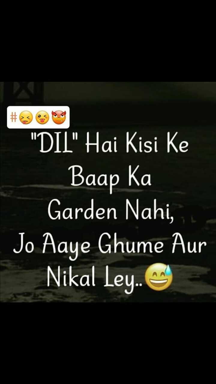 💚love dose💚 - DIL Hai Kisi Ke Baap Ka Garden Nahi , Jo Aaye Ghume Aur Nikal Ley . . - ShareChat