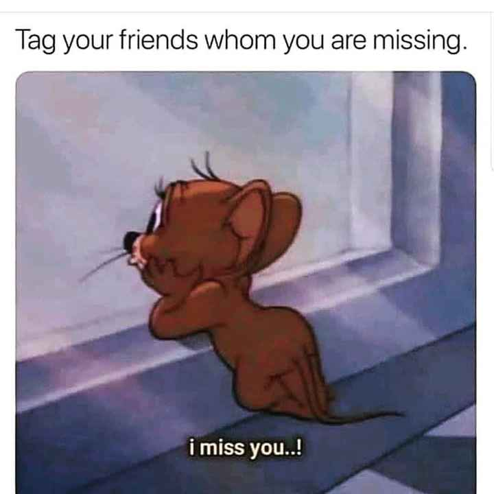lovely person - Tag your friends whom you are missing . i miss you . . ! - ShareChat