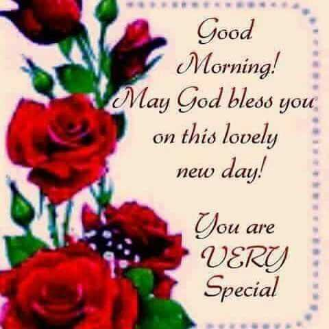 mallesh - Good Morning ! May God bless you on this lovely new day ! You are VERY Special - ShareChat
