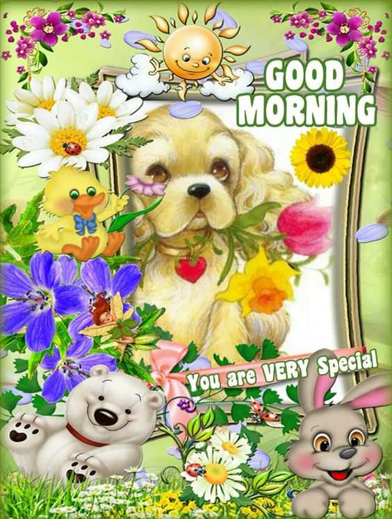 mallesh - GOOD MORNING You are VERY Special - ShareChat