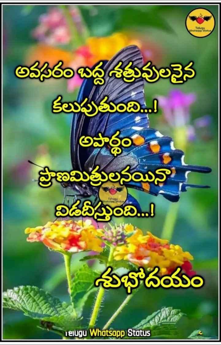 manchi mata - Telugu whatsopp Status అవసరం బద్ద శత్రువులనైన కలుపుతుంది . . . ! అపార్థం ప్రాణమిత్రులనయినా విడదీస్తుంది . . . ! Telugu Whatsapp Status శుభోదయం Telugu Whatsapp Status - ShareChat