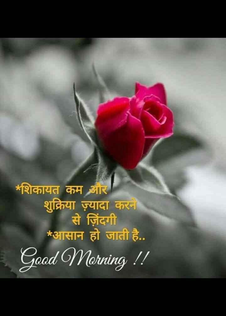 mara vicharo.....👈👈👌 - * शिकायत कम और शुक्रिया ज़्यादा करने से जिंदगी * आसान हो जाती है . . Good Morning ! ! - ShareChat