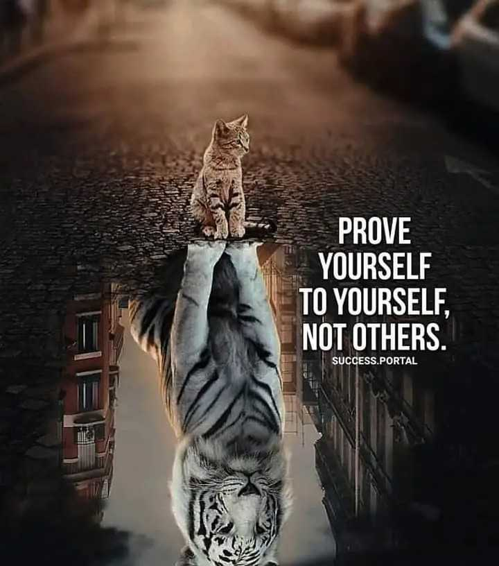 mass quotes - PROVE YOURSELF TO YOURSELF , NOT OTHERS . SUCCESS . PORTAL - ShareChat