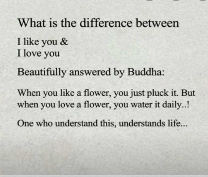 mass quotes - What is the difference between I like you & I love you Beautifully answered by Buddha : When you like a flower , you just pluck it . But when you love a flower , you water it daily . . ! One who understand this , understands life . . . - ShareChat
