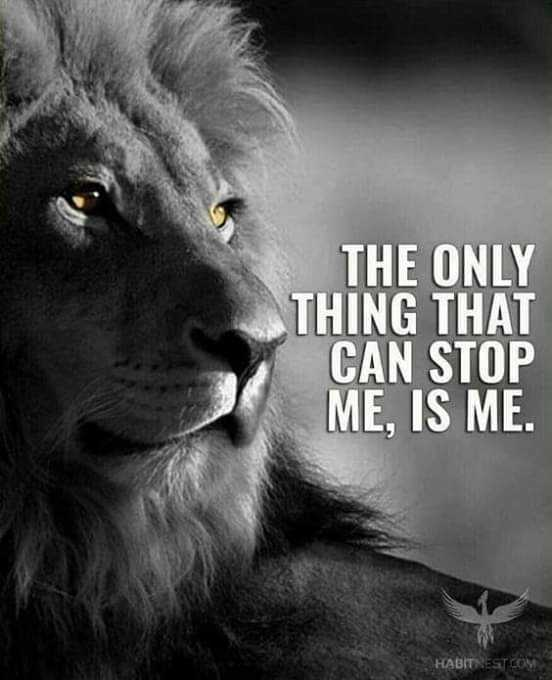 mass quotes - THE ONLY THING THAT CAN STOP ME , IS ME . HABITNEST . COM - ShareChat