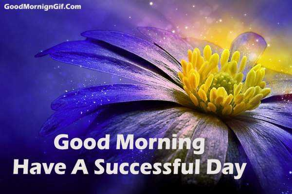 morning..! - Good MornignGif . Com Good Morning Have A Successful Day - ShareChat