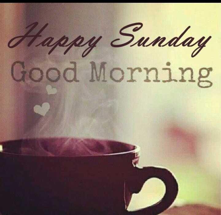 morning wishes🤗 - Happy Sunday Good Morning - ShareChat