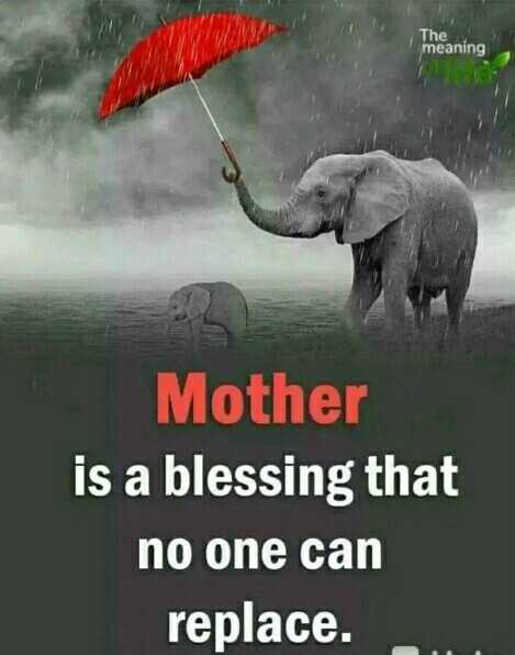 mother father loves - The meaning Mother is a blessing that no one can replace . - ShareChat