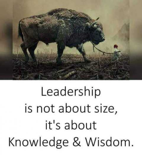#motivatinol_thoughts - Leadership is not about size , it ' s about Knowledge & Wisdom . - ShareChat