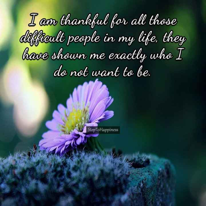 💪 motivation - I am thankful for all those difficult people in my life , they have shown me exactly who I do not want to be . StepToHappiness - ShareChat