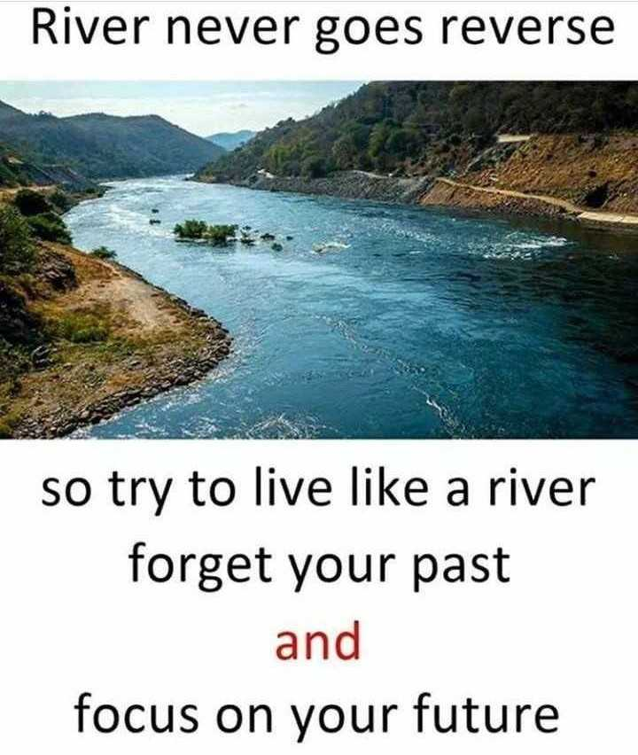 motivational quotes - River never goes reverse so try to live like a river forget your past and focus on your future - ShareChat