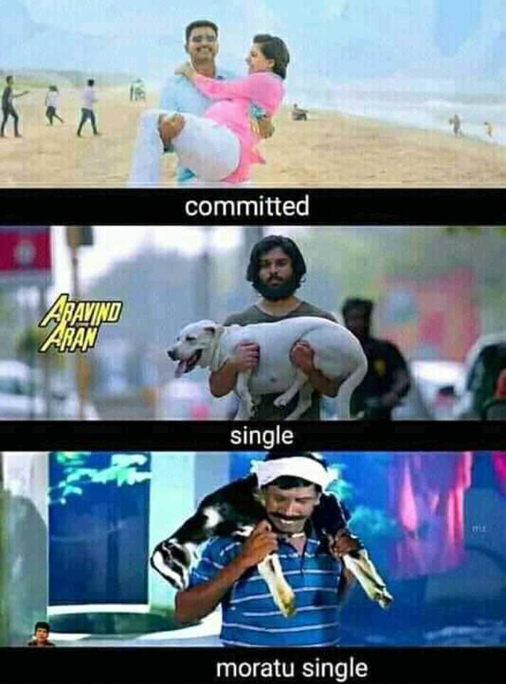 murattu singles - committed ALATINO ARAN single moratu single - ShareChat