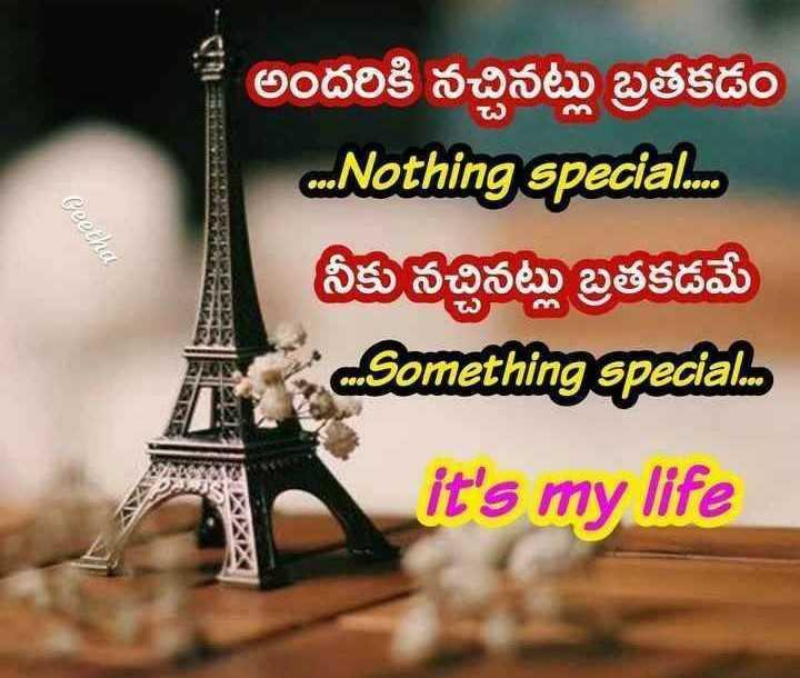 my attitude - Ceetha అందరికి నచ్చినట్లు బ్రతకడం . . Nothing special . . . నీకు నచ్చినట్లు బ్రతకడమే Something special it ' s my life - ShareChat