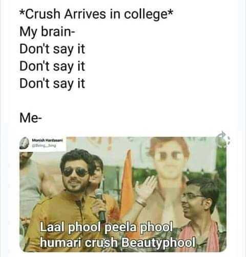 my crush 😍 - * Crush Arrives in college * My brain Don ' t say it Don ' t say it Don ' t say it Me Manish Mantan Laal phool peela phool humari crush Beautyphool - ShareChat