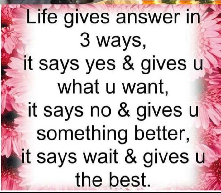 my life my rules and thats no rules - Life gives answer in 3 ways , it says yes & gives u . what u want , it says no & gives u something better , it says wait & gives u the best . - ShareChat