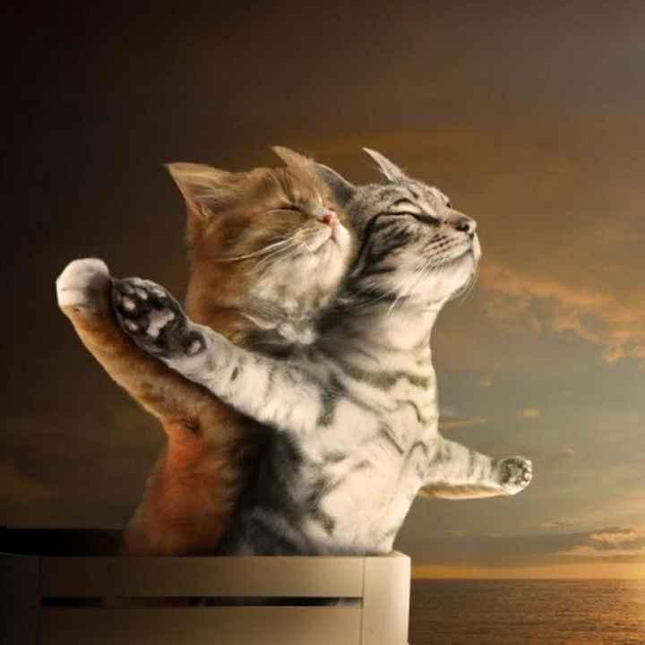 my sweety...😘soooo cute😍 - ShareChat