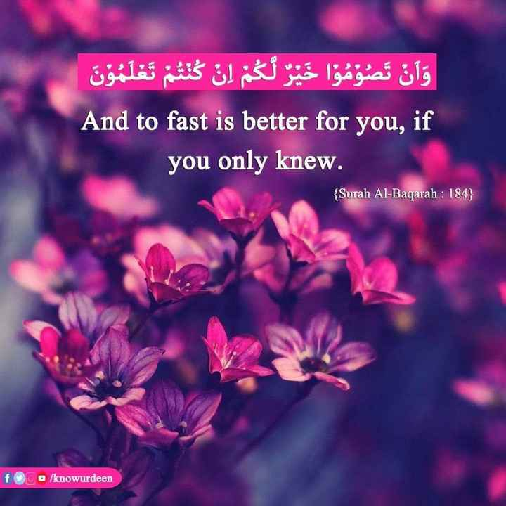 nabi mozhihal - وأن تصوموا خير لكم إن كنتم تعلمون And to fast is better for you , if you only knew . { Surah Al - Baqarah : 184 } f o / knowurdeen - ShareChat