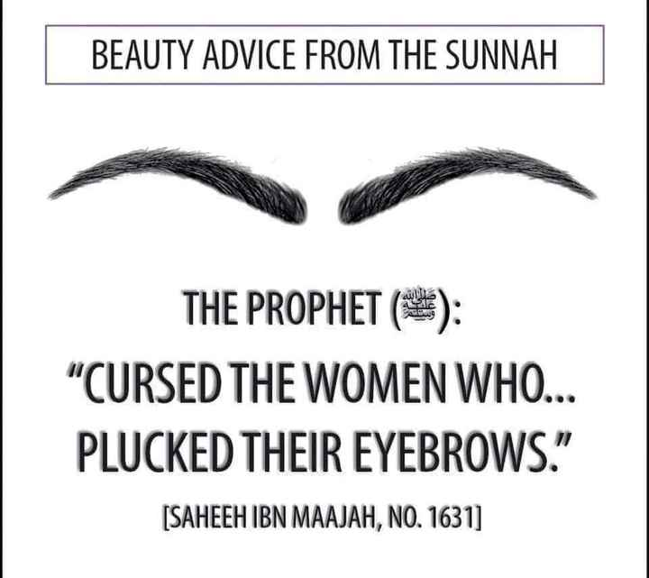 "nabi mozhihal - BEAUTY ADVICE FROM THE SUNNAH THE PROPHET ( * ) : CURSED THE WOMEN WHO . . . PLUCKED THEIR EYEBROWS . "" [ SAHEEH IBN MAAJAH , NO . 1631 ] - ShareChat"