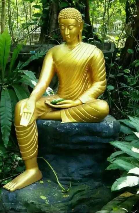 namo buddhay - ShareChat