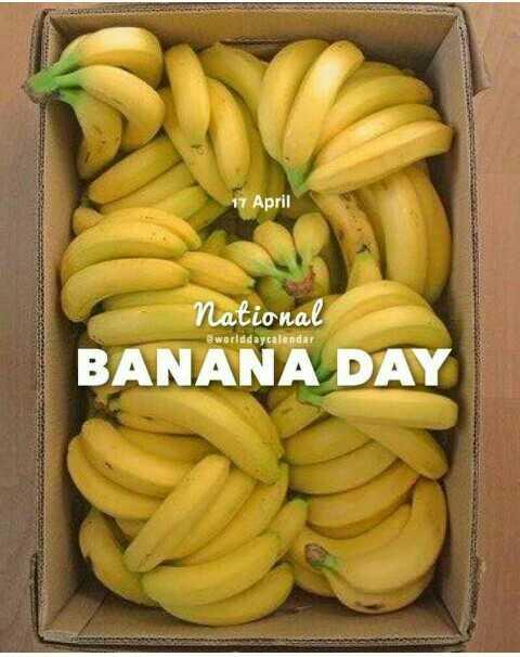 🍌 national banana day - 17 April National @ worlddaycalendar BANANA DAY - ShareChat