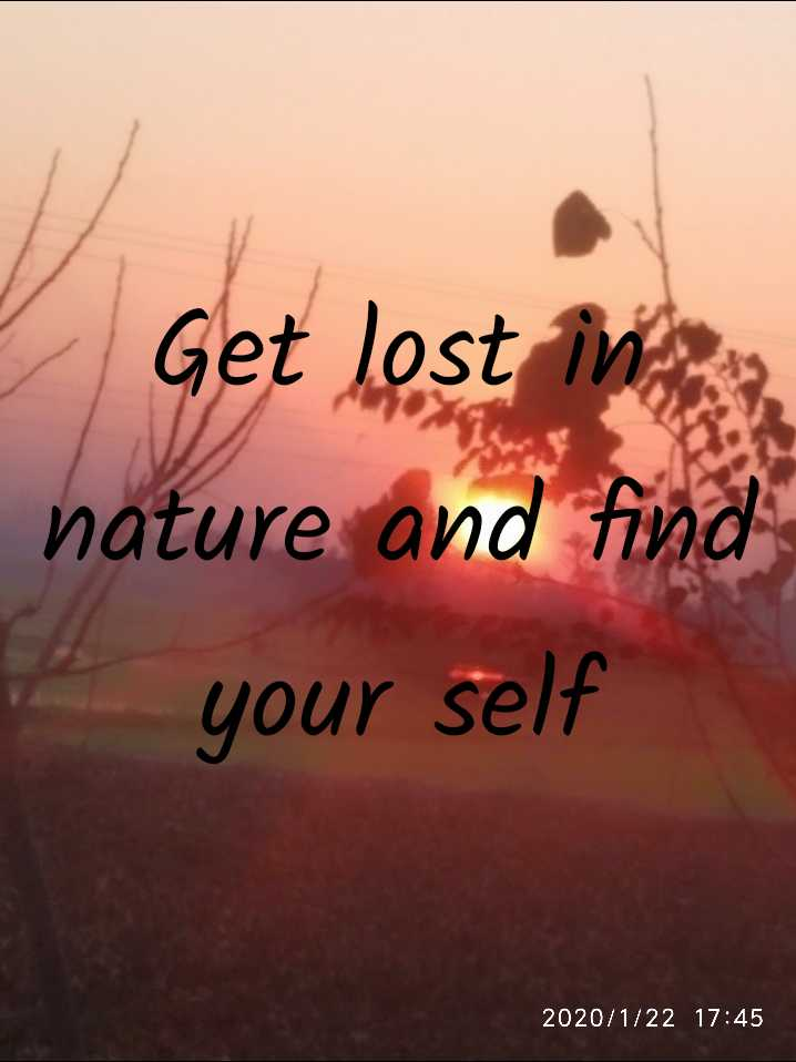 nature - Get lost in nature and fin your self 2020 / 1 / 22 17 : 45 - ShareChat