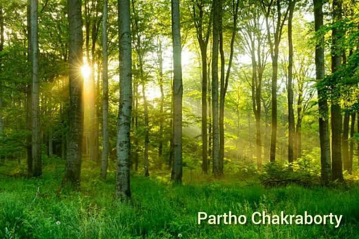 nature - Partho Chakraborty - ShareChat