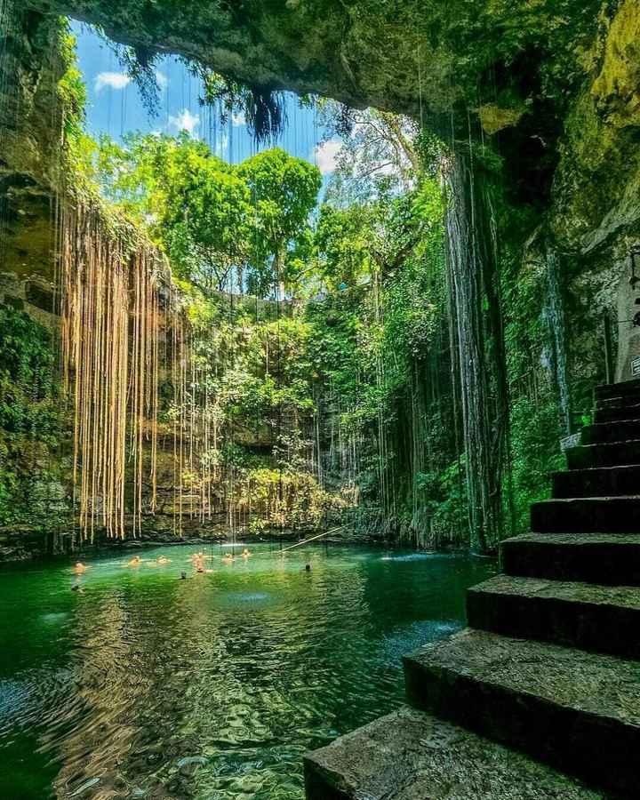 nature image - wwww voor - ShareChat