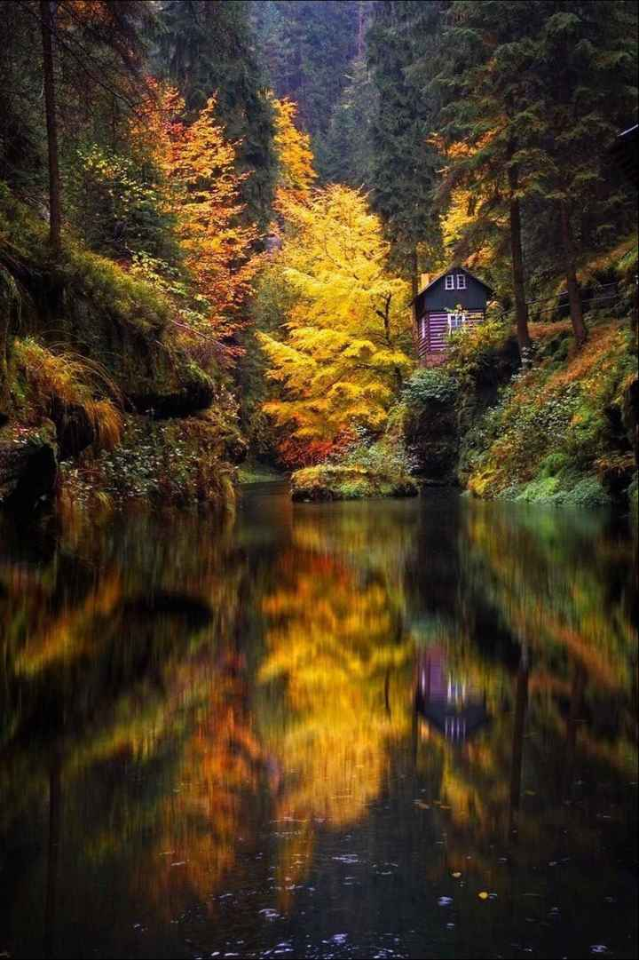 nature image - ShareChat