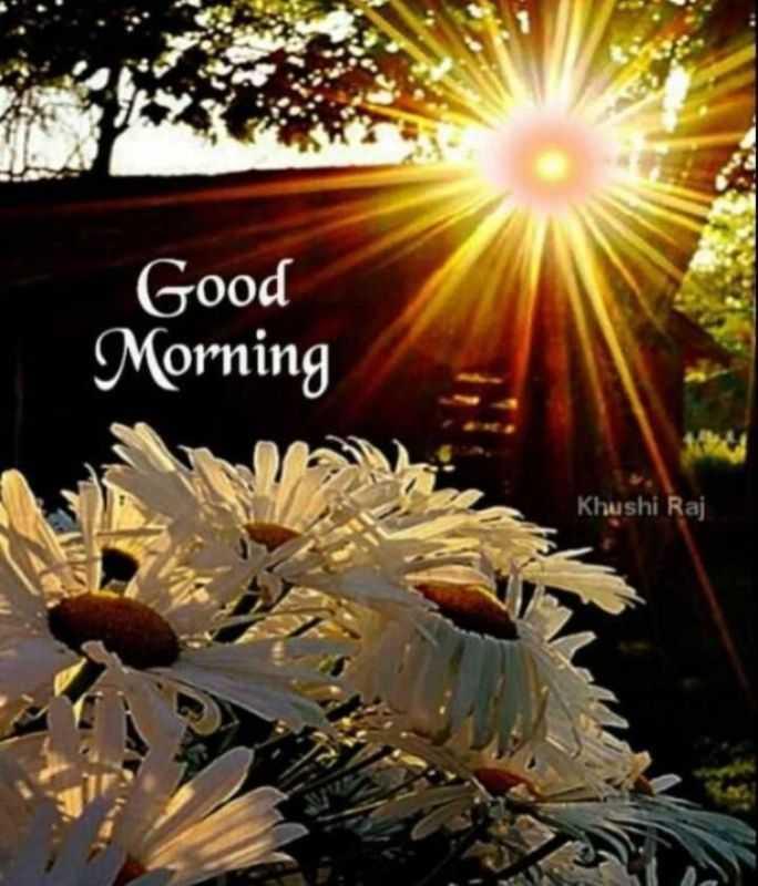 nv - Good Morning Khushi Raj - ShareChat