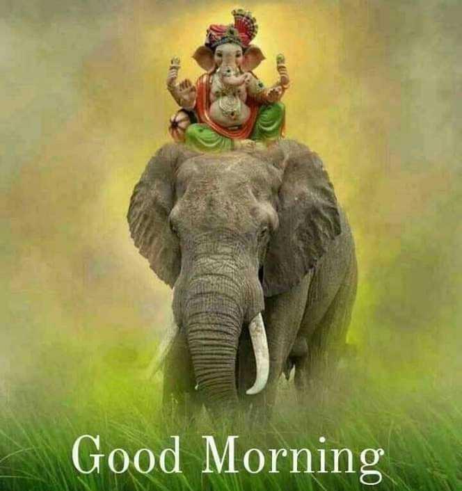 p.k.somshekhar - Good Morning - ShareChat