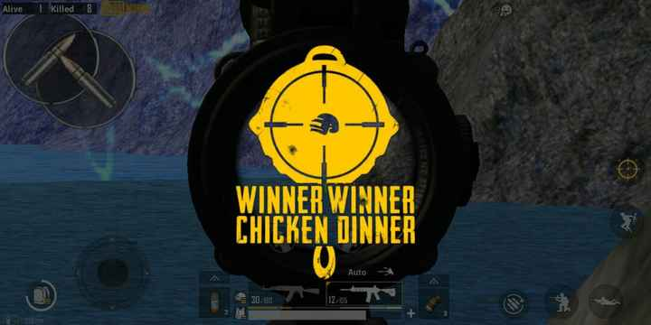pubg special - Alive I killed 8 ) NEO WINNER WINNER CHICKEN DINNER Auto 30 / 180 12 / 05 - ShareChat